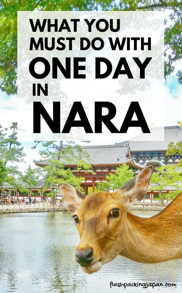 Best things to do in Nara in one day itinerary. Day trip from Kyoto. Day trip from Osaka. Backpacking Japan