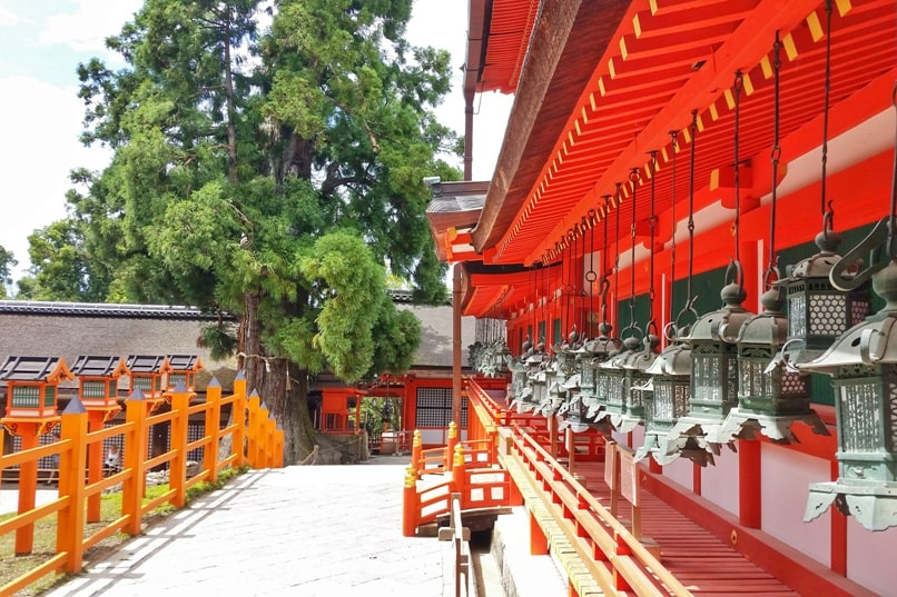 Places to visit in Nara in one day itinerary: Kasuga taisha shrine with hanging lanterns. UNESCO world heritage site. Backpacking Japan