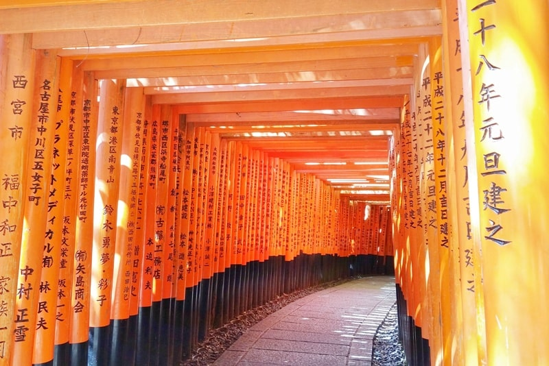 Tokyo to Kyoto shinkansen bullet train with JR pass. Best things to do in Kyoto: Fushimi inari taisha. Backpacking Japan with train travel tips.