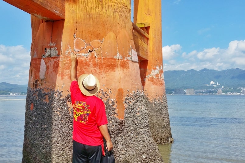 Visit Miyajima high tide times. Things to do in Miyajima low tide times that's worth it: Walk to (non) floating torii shrine gate, coins. Itsukushima shrine, coins. Backpacking Japan.