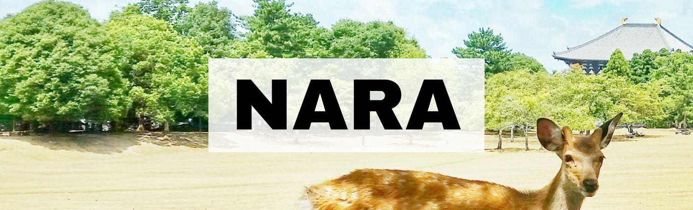 Backpacking Japan travel blog: Nara. Japan itinerary travel planning tips.