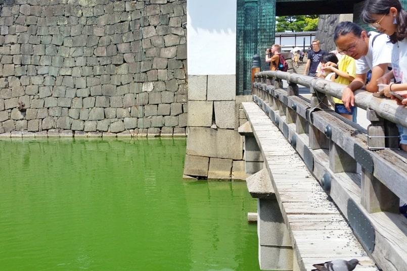 Visit to Nijo Castle. Bridge with carp. Backpacking Kyoto Japan