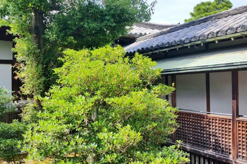 Visit to Nijo Castle. Ninomaru-goten palace - walking to interior. Backpacking Kyoto Japan
