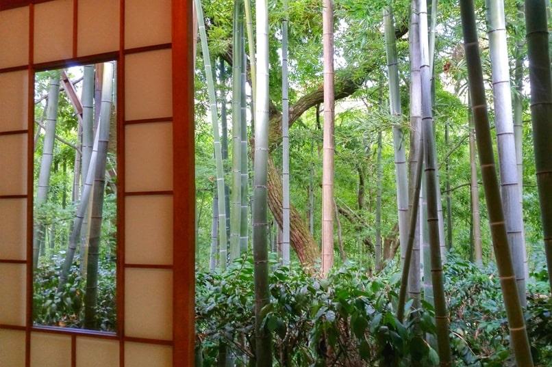 Okochi sanso villa gardens teahouse next to bamboo grove forest. One day in Arashiyama Sagano. Backpacking Kyoto Japan