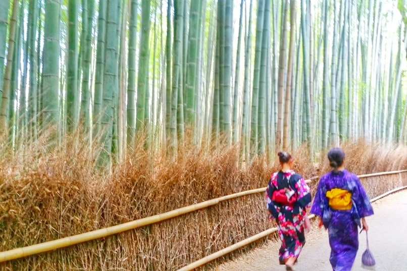 Arashiyama bamboo forest grove with kimono rental. pictures. Kyoto bamboo forest. Backpacking Japan