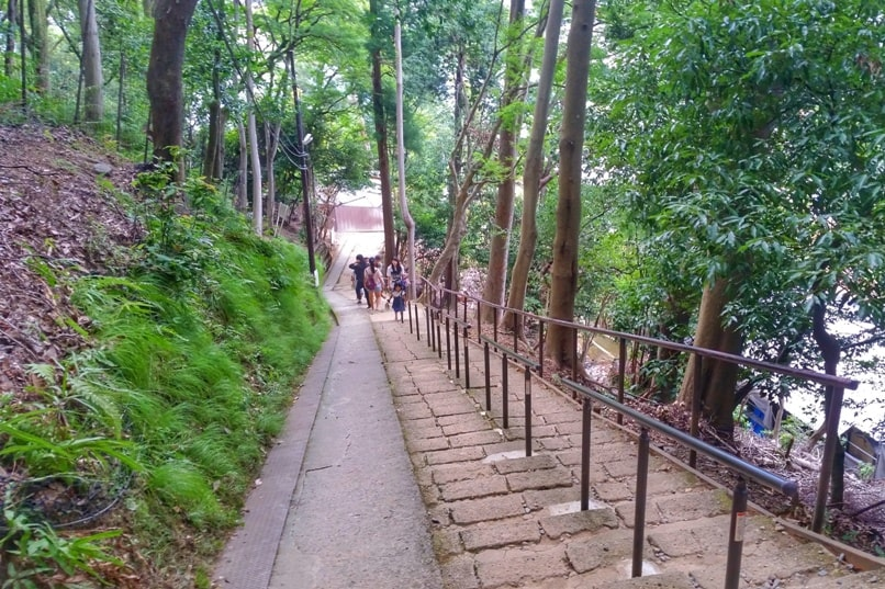 Arashiyama monkey park - Kyoto hike. One day in Arashiyama and Sagano. Backpacking Japan