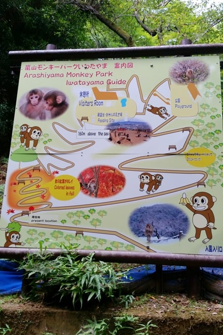 Arashiyama monkey park map. One day in Arashiyama and Sagano. Backpacking Japan