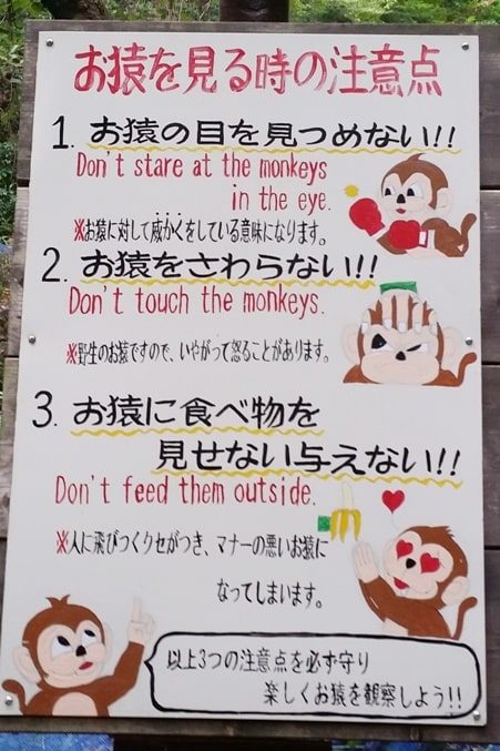 Arashiyama monkey park map. rules for Japanese snow monkeys in Kyoto. One day in Arashiyama and Sagano. Backpacking Japan