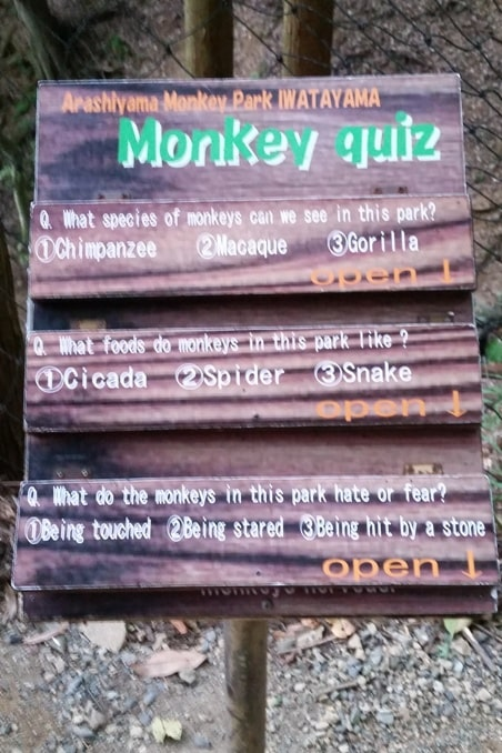 Arashiyama monkey park map. Facts and information about Japanese snow monkeys in Kyoto. One day in Arashiyama and Sagano. Backpacking Japan