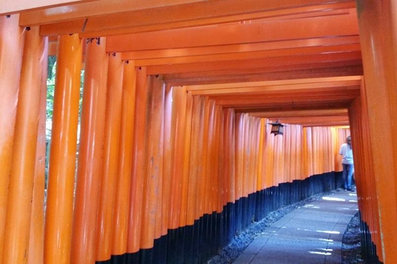 Fushimi inari shrine hike - torii gate walk. Backpacking Kyoto Japan