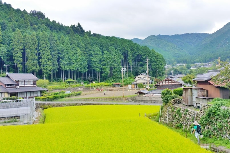 Jakko-in to Ohara bus station walk. Kyoto day trip. Backpacking Kyoto Japan