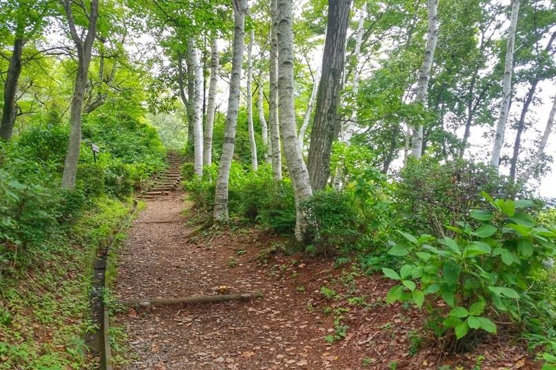 Mount Tenjo hike. Hiking trail. Kawaguchiko, Fuji Five Lakes. Best hiking trails in Japan. Backpacking Japan