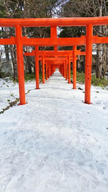 Sapporo fushimi inari shrine torii gates in winter. Backpacking Hokkaido Japan