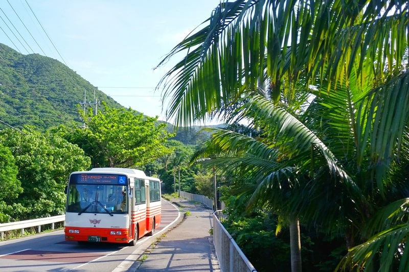 Backpacking Ishigaki Okinawa travel guide: Getting around Ishigaki by bus, public transportation. Japan