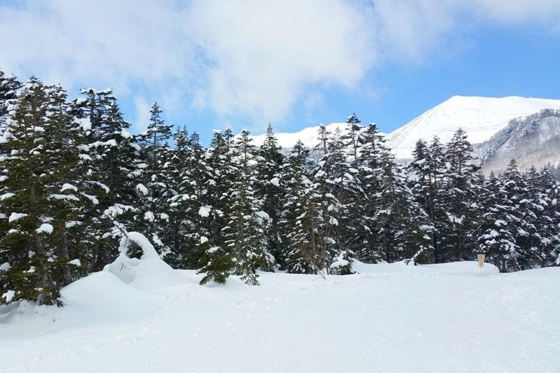 K's house hakuba hostel. best ski resorts in japan, nagano. Backpacking Japan Alps winter travel