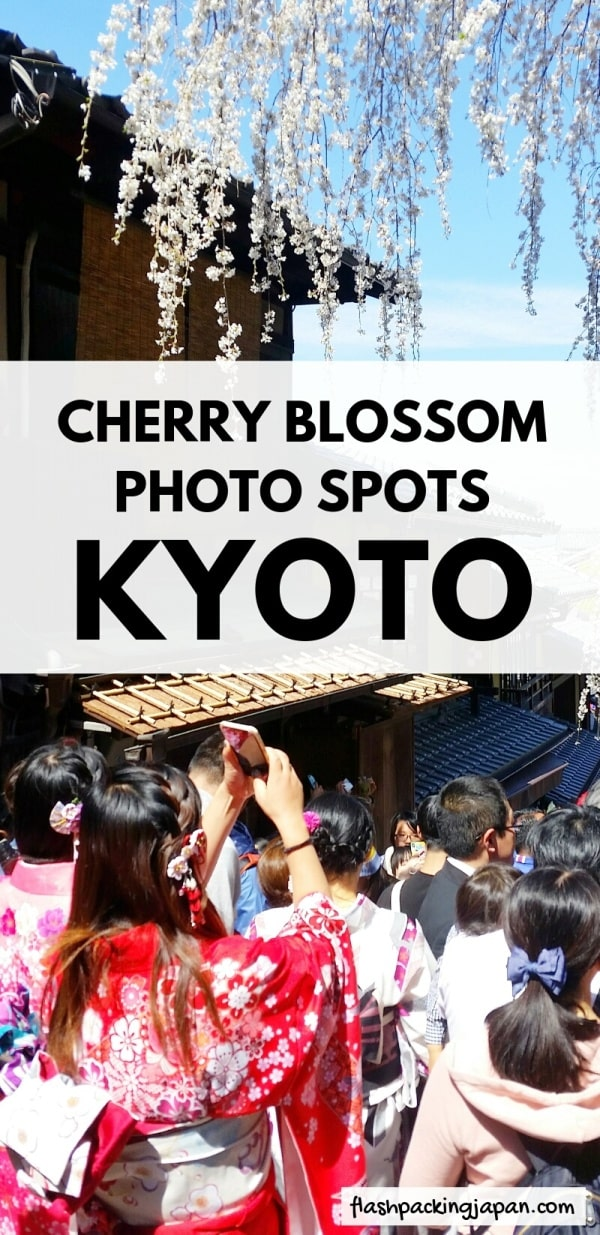 Best cherry blossom photo spots in Kyoto - when is best time to go to japan for spring travel march or april for cherry blossoms, sakura hanami. perfect one day kyoto itinerary. Backpacking Kyoto Japan travel blog