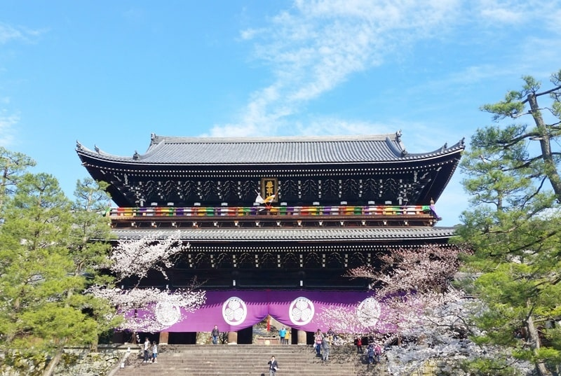 Best cherry blossom photo spots in Kyoto - chion-in temple - maruyama park gion to heian shrine. Backpacking Kyoto Japan