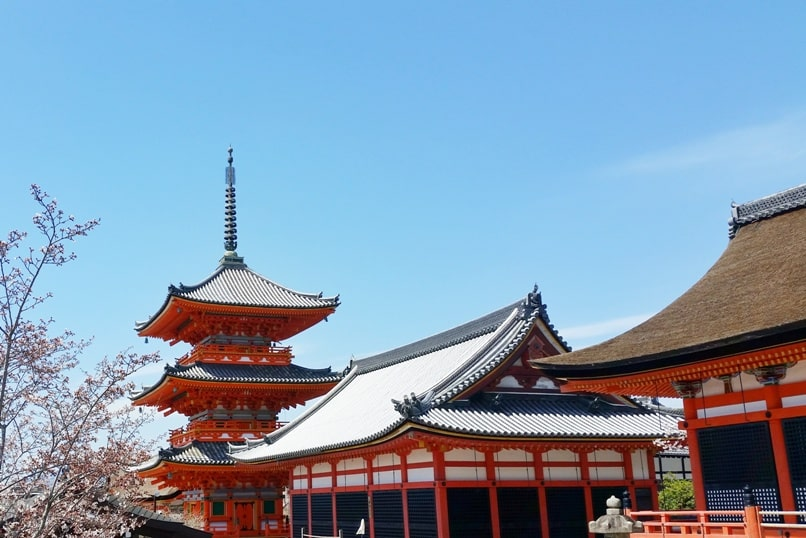 Best cherry blossom spots in Kyoto - Kiyomizu-dera temple cherry blossom. Backpacking Kyoto Japan