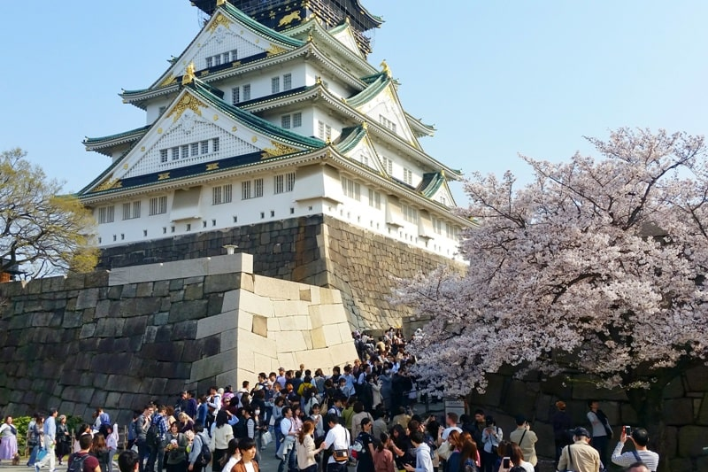 Osaka castle with cherry blossoms - best cherry blossom spots in osaka - tourist crowds - things to do in osaka to see cherry blossoms. Backpacking Osaka Japan