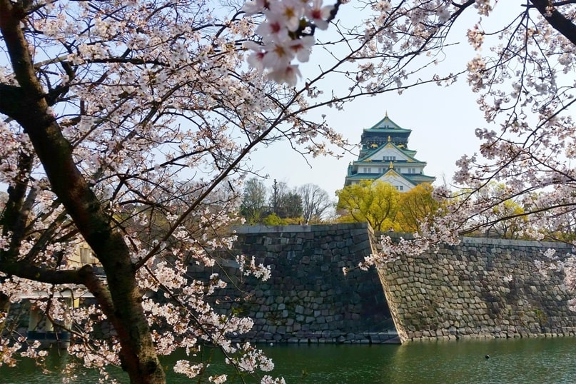 Osaka castle moat with cherry blossoms - best cherry blossom spots in osaka, instagram - things to do in osaka to see cherry blossoms. Backpacking Osaka Japan