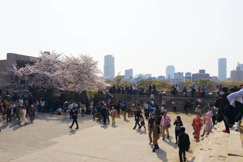 Osaka castle with cherry blossoms - castle square plaza osaka city views - things to do in osaka to see cherry blossoms. Backpacking Osaka Japan