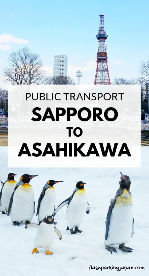 Sapporo to Asahikawa train to get to asahiyama zoo. with JR pass, with JR hokkaido pass. Backpacking Hokkaido Japan travel blog