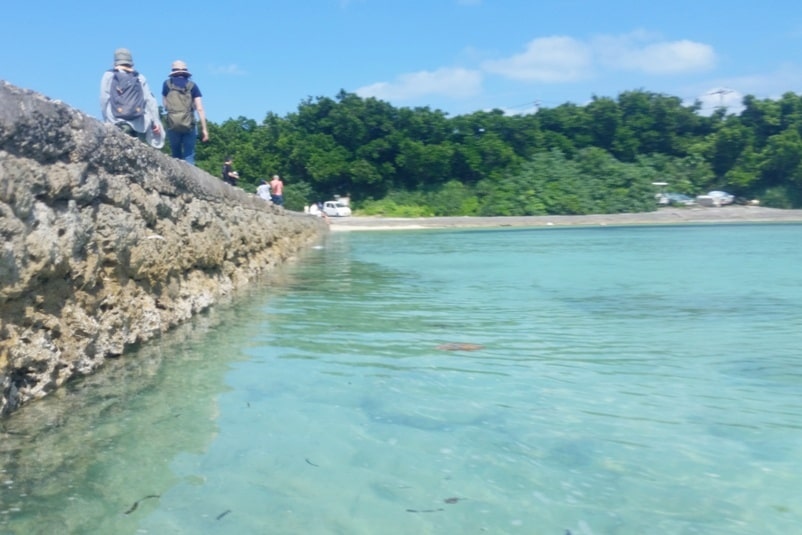 Taketomi Island. Nishi sanbashi pier beach- snorkeling spot?! Backpacking Yaeyama islands, Okinawa Japan