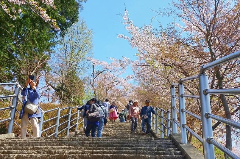 Tokyo to Chureito Pagoda. how to get to chureito pagoda. Backpacking Tokyo Japan