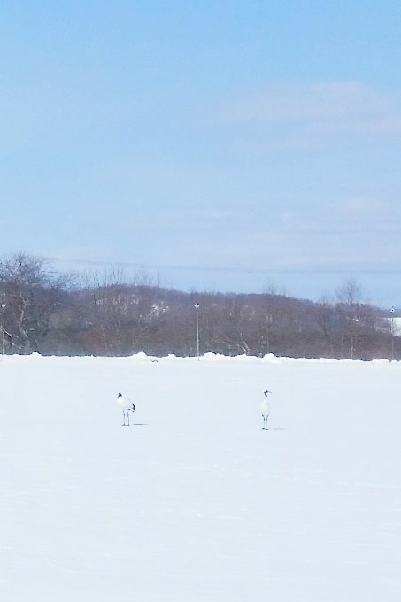 Hokkaido Japan winter itinerary with 7-day JR Hokkaido pass. japanese red crane train station. abashiri to kushiro. 2 days in Hokkaido. Backpacking Japan winter travel blog