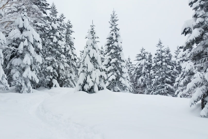 Best winter hiking trails from Shinhotaka ropeway. short easy hikes. Day trip from Takayama. Best things to do in Japanese alps. Backpacking Japan winter travel blog