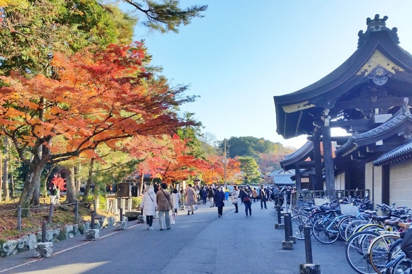 Autumn in Kyoto Japan. Best places to visit in Kyoto for fall foliage colors. Nanzenji Temple, philosopher's path walk. October, November, December. koyo momiji photos spots. red orange yellow. Kyoto Japan travel blog