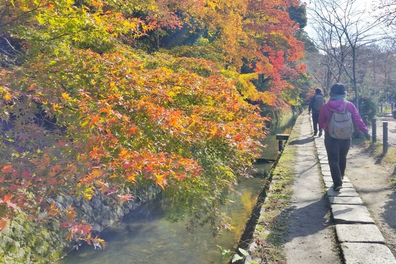 Autumn in Kyoto Japan. Best places to visit in Kyoto for fall foliage colors. Philosophers path, tetsugaku no michi. October, November, December. koyo momiji photos spots. red orange yellow. Kyoto Japan travel blog