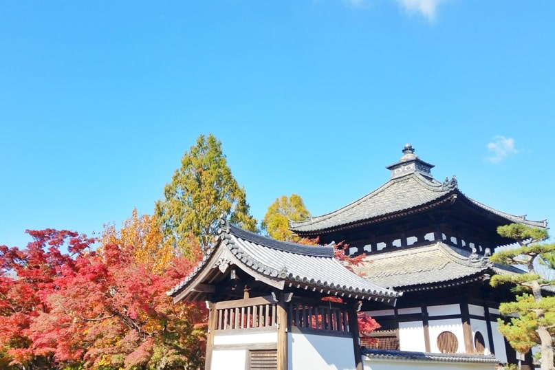 Autumn in Kyoto Japan. Best places to visit in Kyoto for fall foliage colors. Tofukuji Temple. October, November, December. koyo momiji photos spots. red orange yellow. Kyoto Japan travel blog