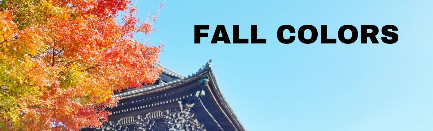 Backpacking Japan travel blog: Autumn fall foliage itinerary. Japan itinerary travel planning tips.
