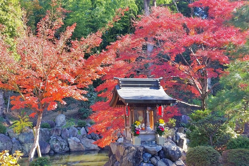 Myoho-in Temple for autumn fall foliage colors in Kyoto. red orange yellow. Backpacking Japan travel blog