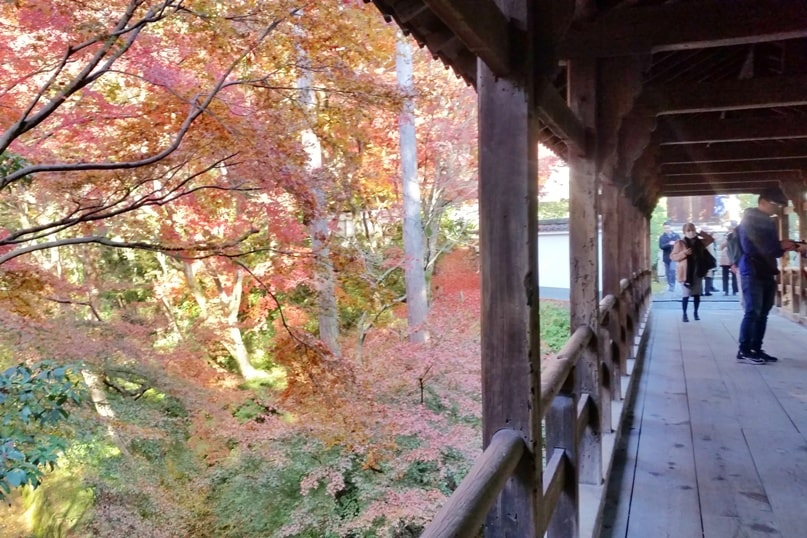 Walking around Tofukuji Temple bridge to get to Ryogin-an temple for autumn fall foliage colors in Kyoto. red orange yellow. Backpacking Japan travel blog